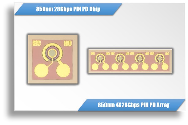 850nm 25Gbps / 100Gbps GaAs PIN PD Chip & 1X4 Array